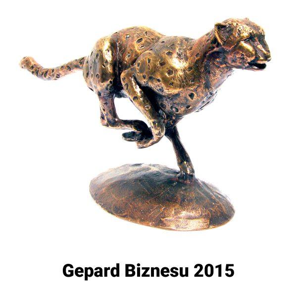 Meringer - Gazela biznesu 2015